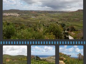 gozo8Collage